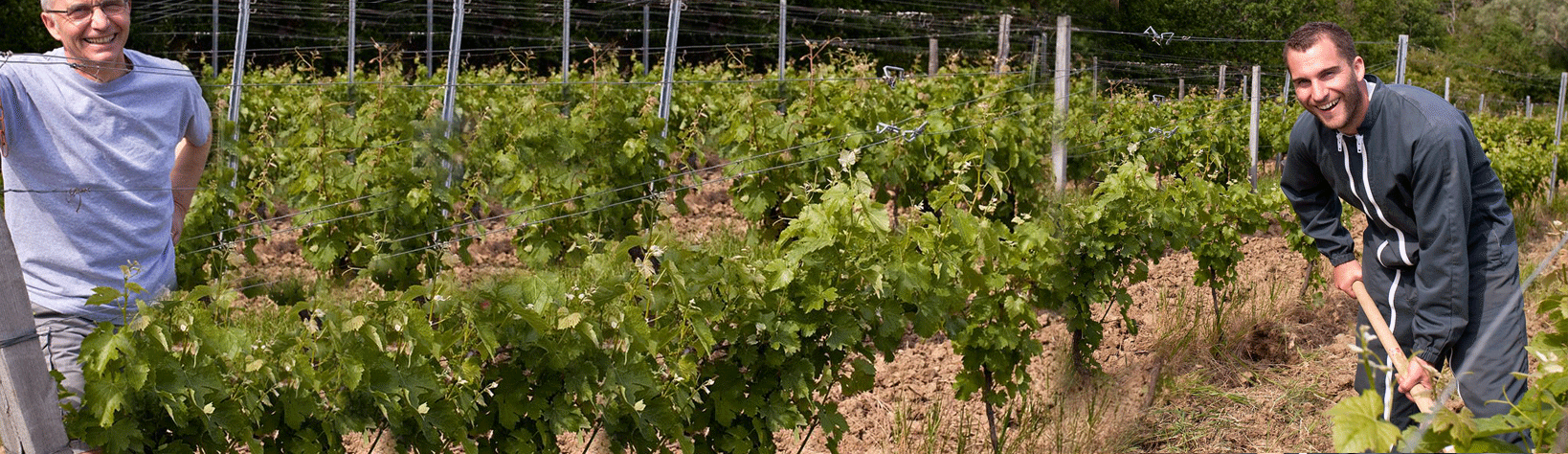 Contactez Château Grinou dans-nos-vignes